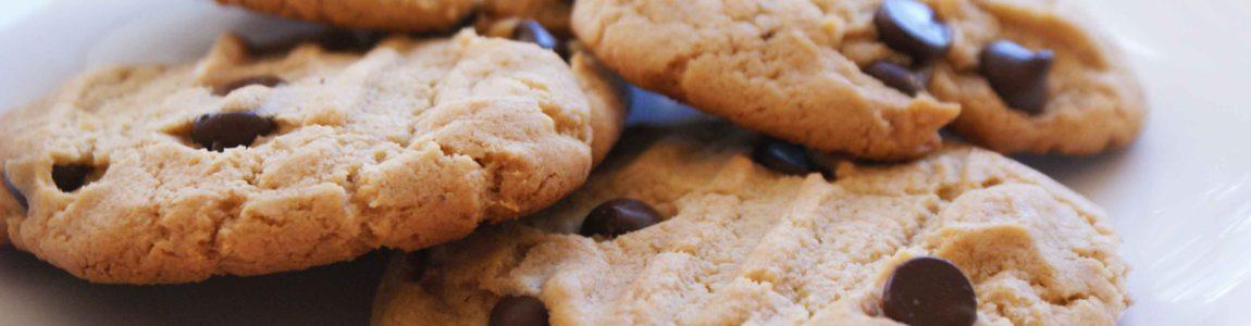 WordPress meldingen voor cookies
