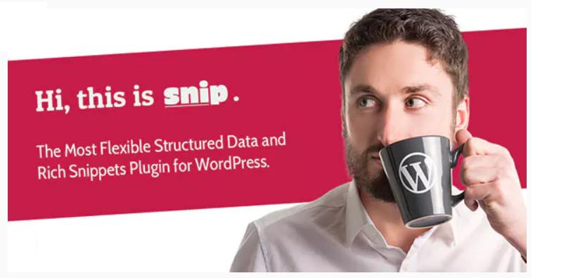 beste snippets wordpress plugin